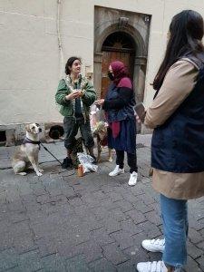 jeune femme à la rue avec ses chiens